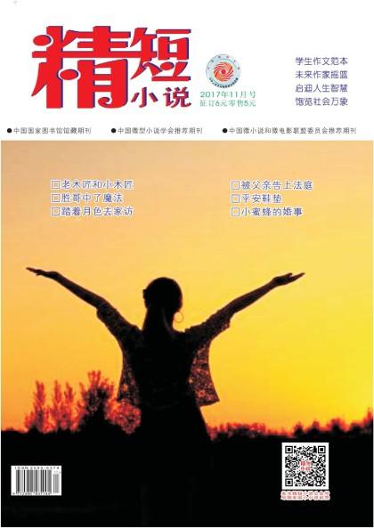 《精短小说》杂志2017年11月号